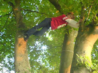 House Gymnastics Site Specific Outdoor Branch Brace